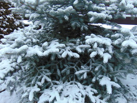 Bukowo Zima 2016 (5).jpeg