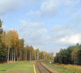 Bukowo jesień (18)x.jpeg