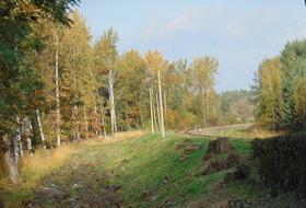 Bukowo jesień (24).jpeg