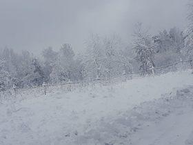 Bukowo zima (4).jpeg