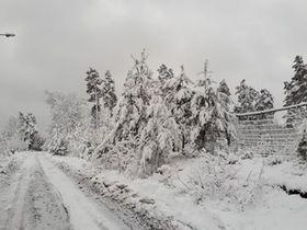 Bukowo zima (5).jpeg