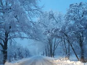 Bukowo zima (7).jpeg