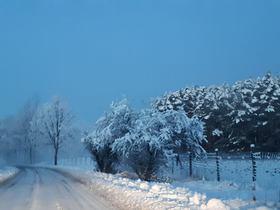 Bukowo zima (10).jpeg