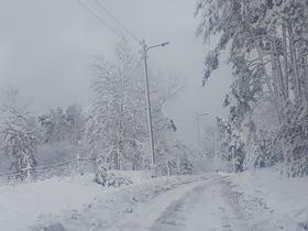Bukowo zima (11).jpeg