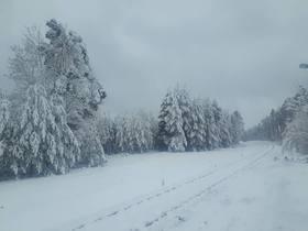 Bukowo zima (13).jpeg