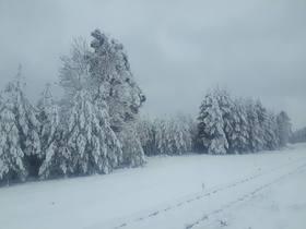 Bukowo zima (15).jpeg