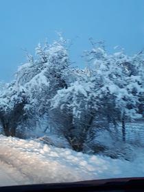 Bukowo zima (17).jpeg